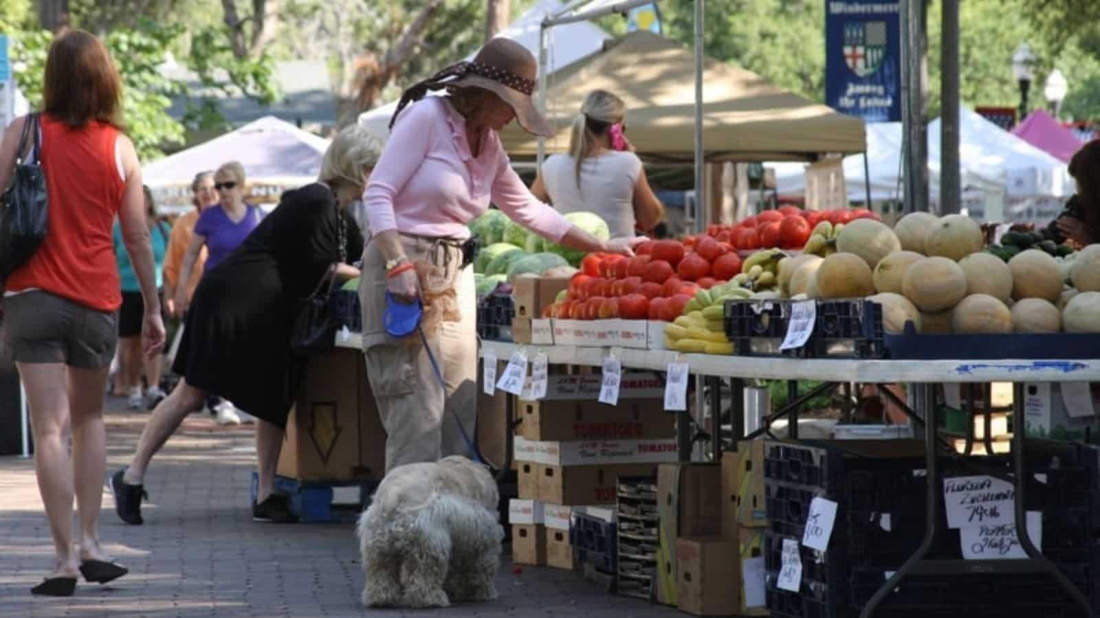 Shoppers attending farmer's market in Windermere Florida