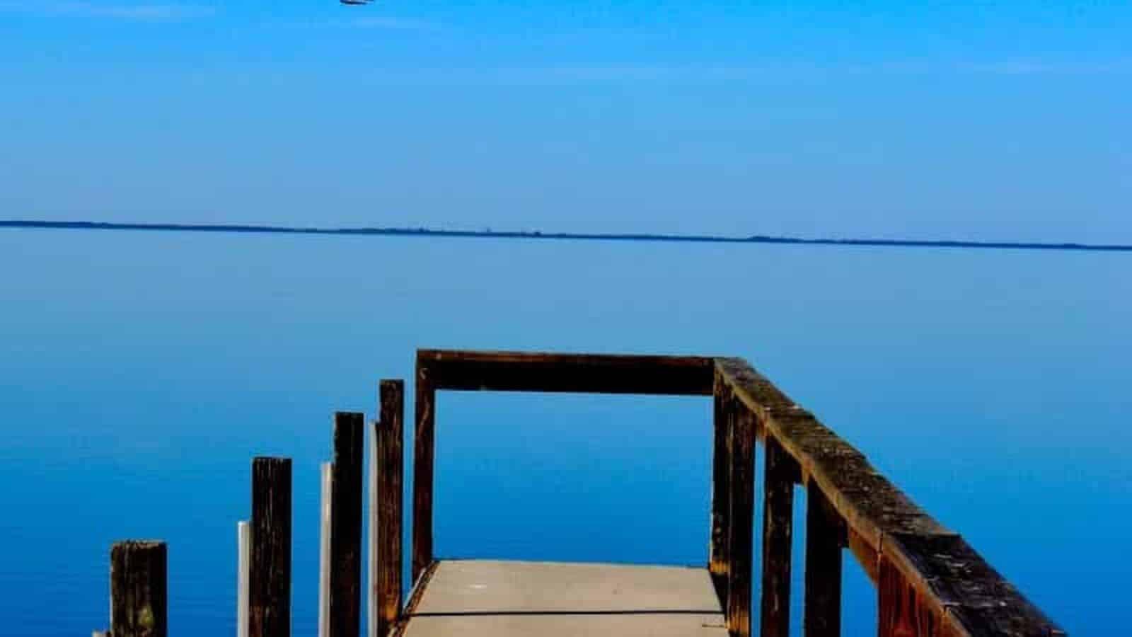 Water view from boardwalk